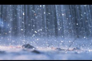 Bavc-Rain638